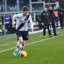Calciomercato Bologna F C News Sul Mondo Del Bologna 24 Ore Su 24